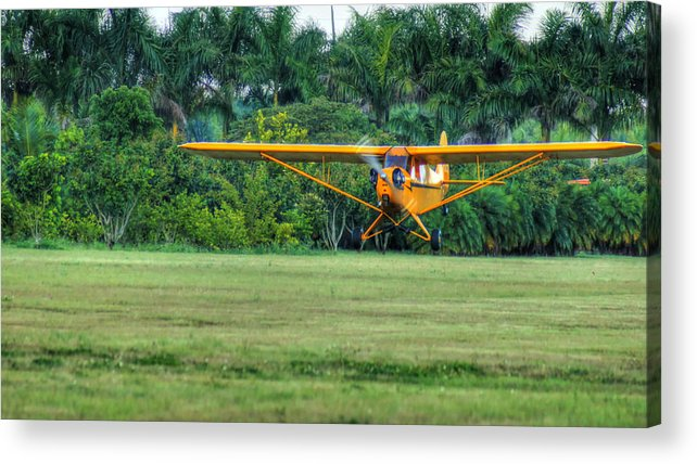 Piper Cub Acrylic Print featuring the photograph Early Departure by Dieter Lesche