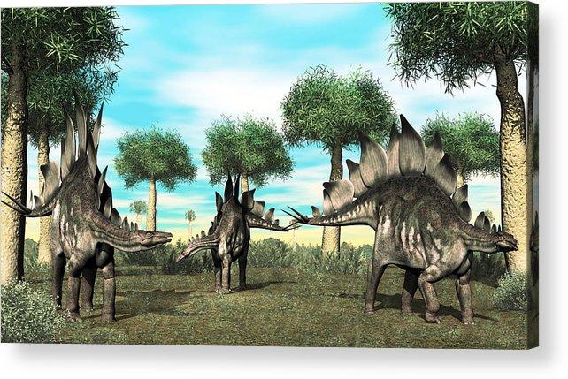 Stegosaurus Acrylic Print featuring the digital art Stegosaurus by Walter Colvin