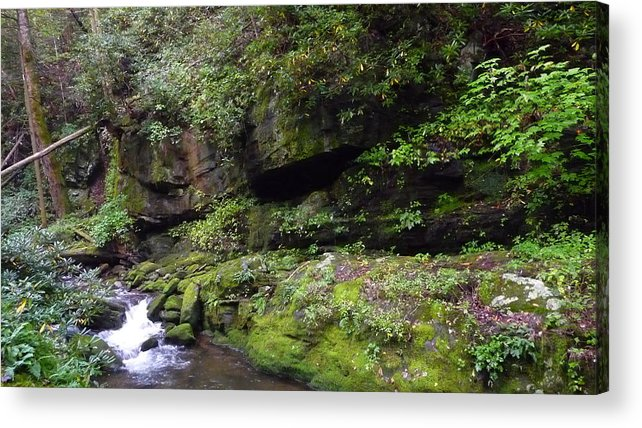 Cascading Water Acrylic Print featuring the photograph Trickle Of Green by Michael Carrothers
