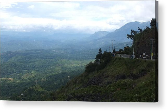 Nature Acrylic Print featuring the photograph Lookouts by Mohan