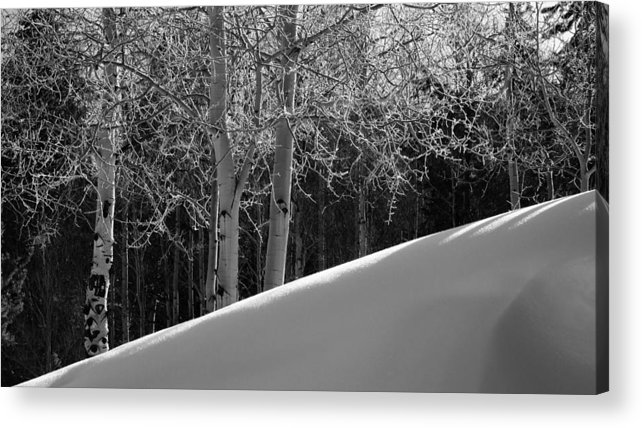 Colorado Acrylic Print featuring the photograph Aspencade by Skip Hunt