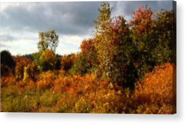 As The Clouds Broke Autumn Had Thrown A Bolt Of Fiery Calico Over The Treeline And Rose Brambles� Acrylic Print featuring the photograph Autumn Calico Along The Arroyo El Valle New Mexico by Anastasia Savage Ealy