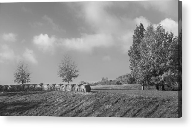 Black And White Acrylic Print featuring the photograph Autumn Hay Bw by Bill Wakeley