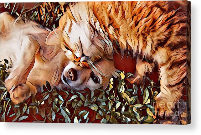 Animals Acrylic Print featuring the photograph Best Friends by Tarisa Smith