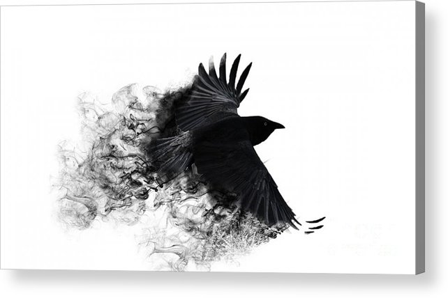 Painting Acrylic Print Featuring The Digital Art Crow Wallpaper By Andy Maryanto