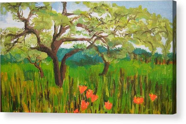 Landscape Acrylic Print featuring the painting Field Of Red Poppies by Mabel Moyano