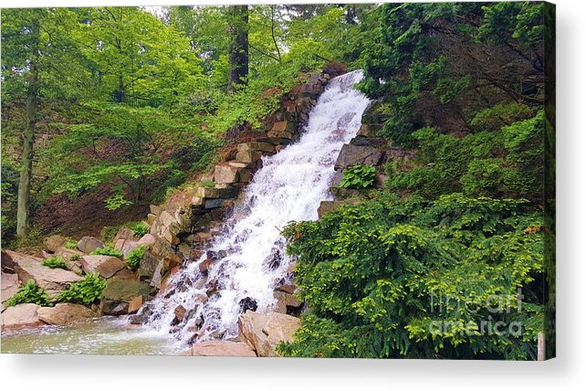 Forest Acrylic Print featuring the photograph Forest Waterfall by Jessica T Hamilton