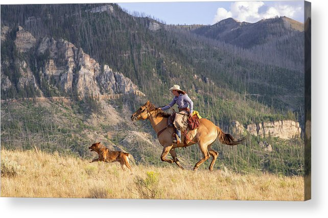 Cowboy Acrylic Print featuring the photograph High Country Ride by Jack Bell