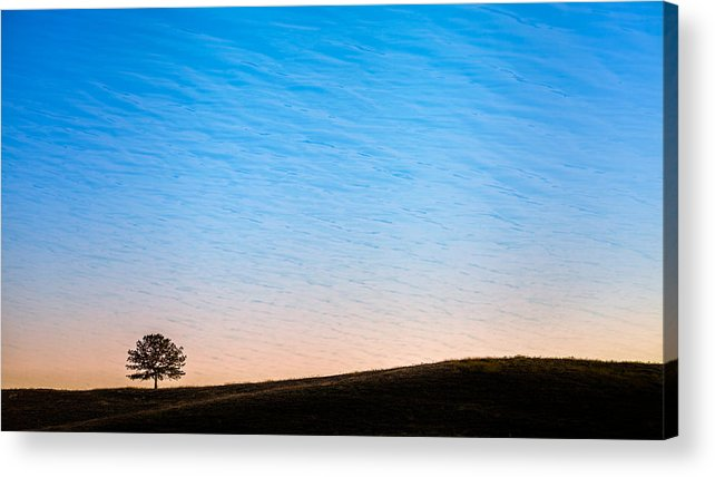 Hill Acrylic Print featuring the photograph Lone Tree Sunrise by Kelly Bryant