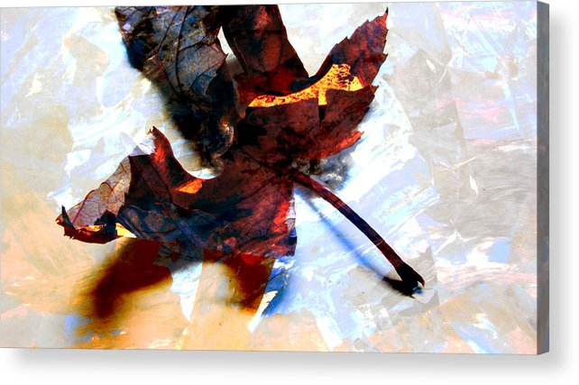 Leaf Acrylic Print featuring the photograph Painted Leaf Series 2 by Anita Burgermeister