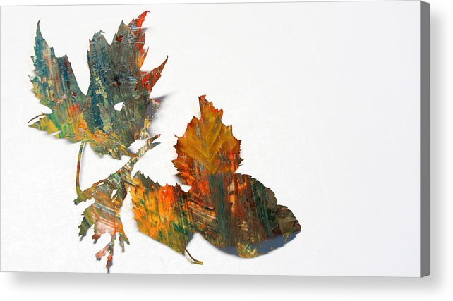 Leaf Acrylic Print featuring the photograph Painted Leaves Abstract 1 by Anita Burgermeister