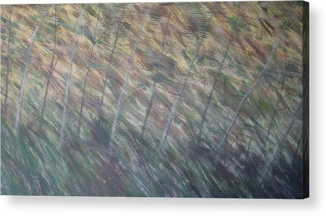 Birch Aspen Trees Landscape Poison Ivy Acrylic Print featuring the painting Right There by Sally Van Driest