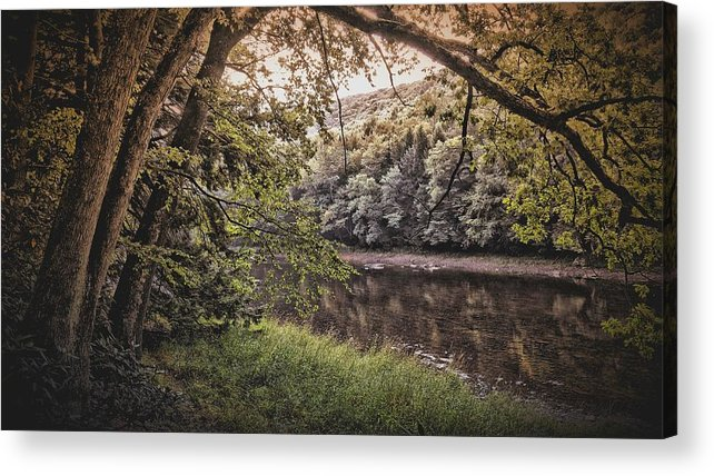 Nature Acrylic Print featuring the photograph The Clearest Way by Shelley Smith
