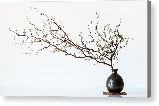 Vase Acrylic Print featuring the photograph Vase And Branch by Prbimages