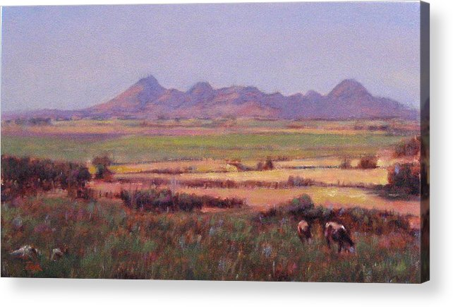 Mountain Acrylic Print featuring the painting Sutter Buttes In Summer Afternoon by Takayuki Harada