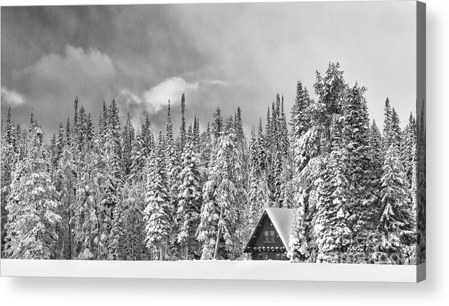 Black & White Acrylic Print featuring the photograph Taking Refuge - Grand Teton by Sandra Bronstein