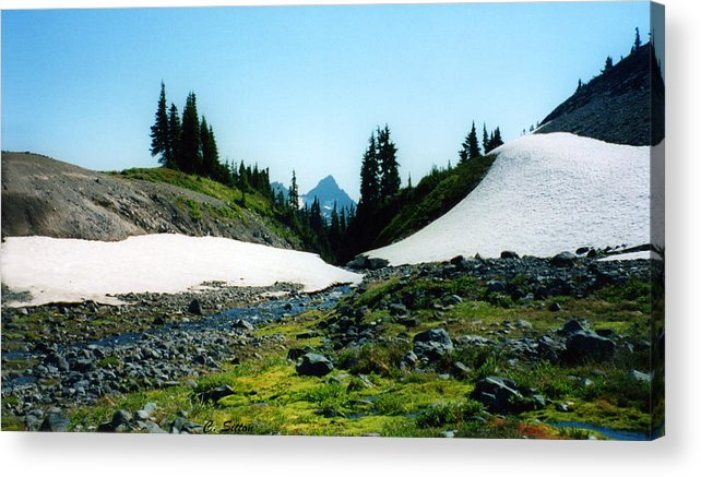 Mt. Hood Photographs Acrylic Print featuring the photograph Oregon Hike by C Sitton