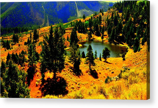 Lake View Acrylic Print featuring the digital art Yellowstone Park by Aron Chervin