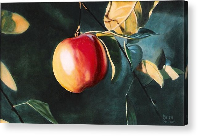 Apple Acrylic Print featuring the painting Before The Fall by Keith Gantos