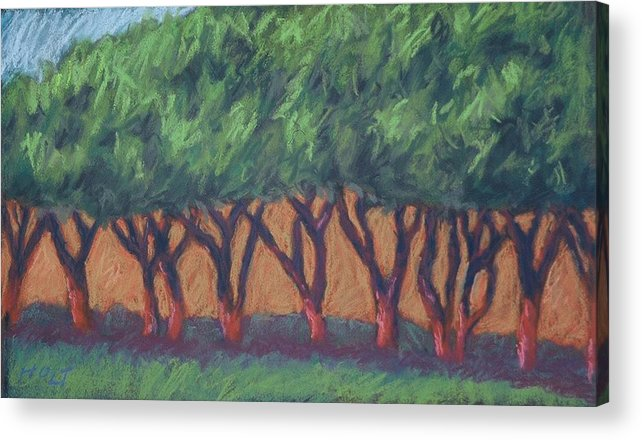Landscape Acrylic Print featuring the painting Dancing Trees by Dolores Holt