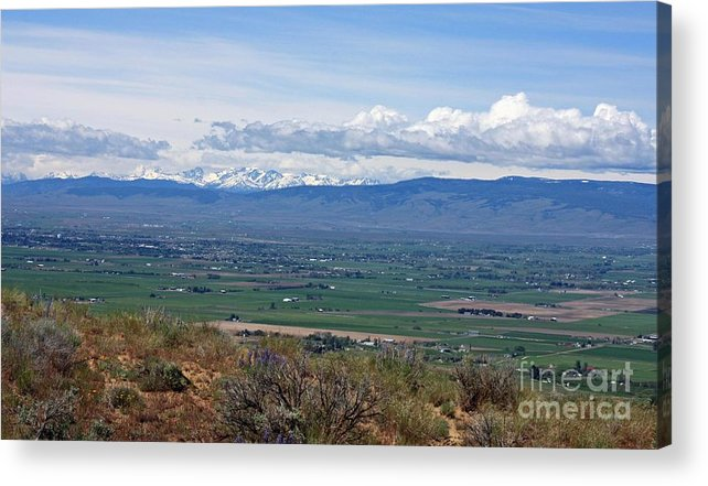 Ellensburg Acrylic Print featuring the photograph Ellensburg Valley With Sagebrush And Lupine by Carol Groenen