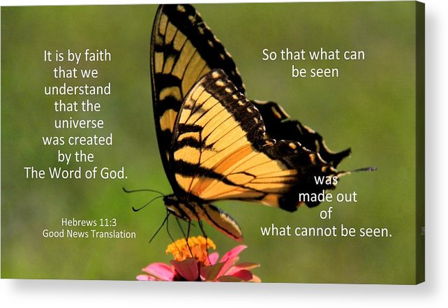 Butterfly Acrylic Print featuring the photograph Hebrews Scripture Butterfly by JerryAnn Berry