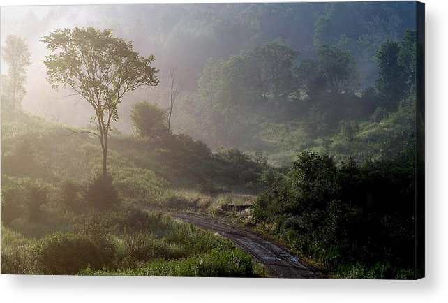 Landscape Acrylic Print featuring the photograph Nature by Robert Ruscansky