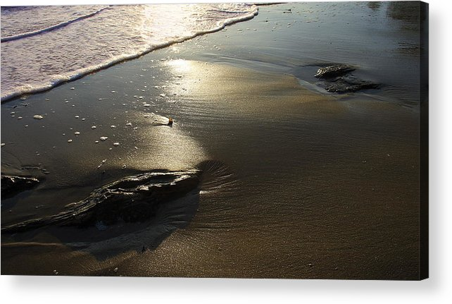 Ocean Acrylic Print featuring the photograph Ocean Beach by Viktor Savchenko