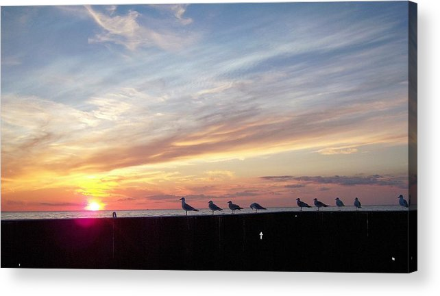 Photo Acrylic Print featuring the photograph Seagulls And Sunset On Lake Erie by Patricia R Moore