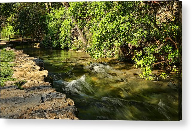 America Acrylic Print featuring the photograph Small Creek At Landa Park by Judy Vincent