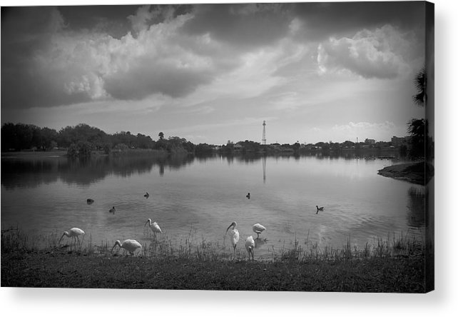 Black And White Acrylic Print featuring the photograph Darkness by Mayra Pau