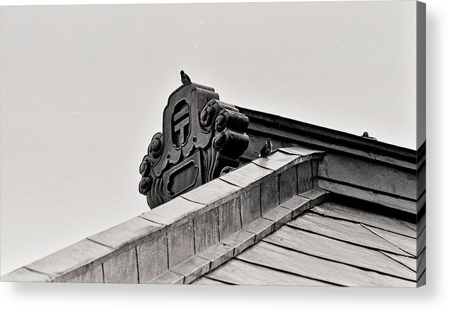 Acrylic Print featuring the photograph Sparrows Enjoy The Copper Roof by Craig Wood