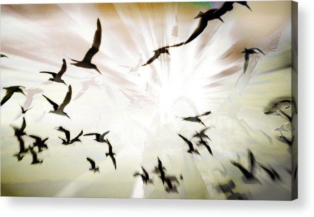 Digital Photography Acrylic Print featuring the photograph Birds Explosion by Tony Wood