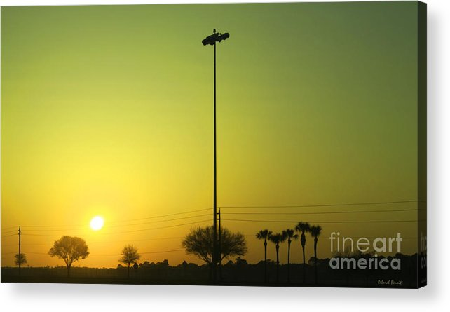 Golden Acrylic Print featuring the photograph Golden Sunrise by Deborah Benoit