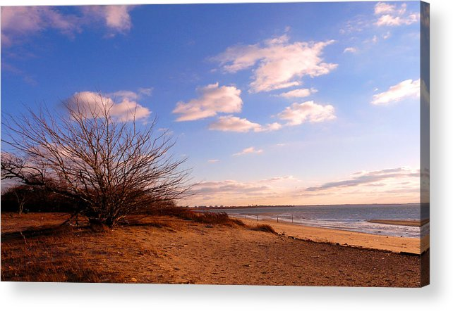 Landscape Acrylic Print featuring the photograph Listen To The Quiet by Kendall Eutemey