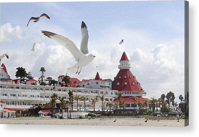 Beach Acrylic Print featuring the photograph Morning Gulls On Coronado by Margie Wildblood