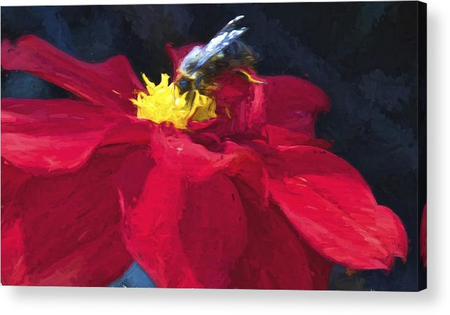 Bartrams Garden Acrylic Print featuring the photograph Bartram Bee by Alice Gipson