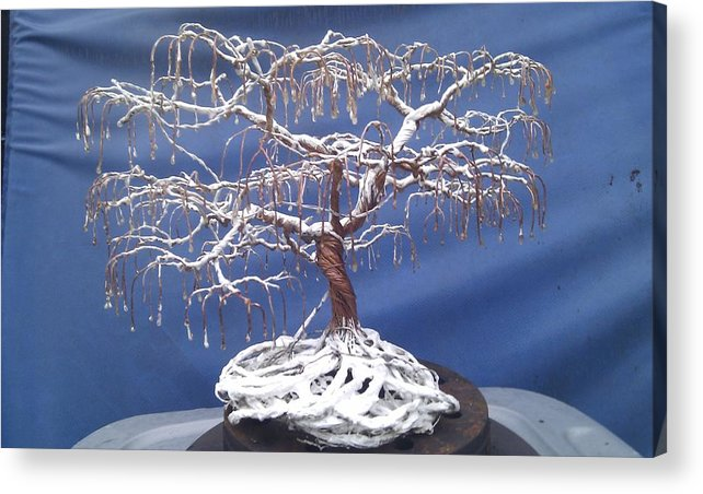 Winter Acrylic Print featuring the mixed media Cinabonsi by Brian Boyer