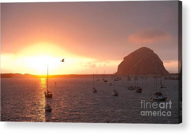 Morro Bay Ca Photographs Acrylic Print featuring the photograph Morro Bay Rock At Sunset by Artist and Photographer Laura Wrede