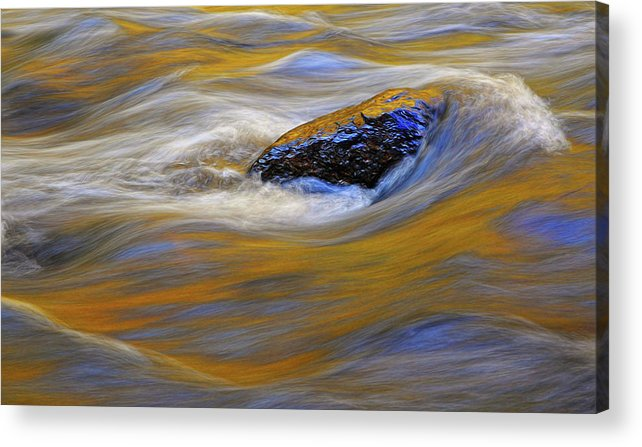 Water Acrylic Print featuring the photograph Reflected Color by Dave Mills
