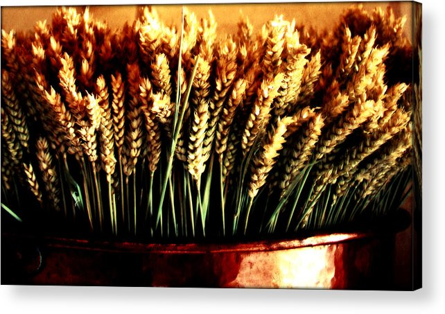 Grain Acrylic Print featuring the photograph Grain In Copper Pot by Susie Weaver