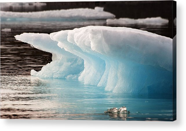 Iceberg Acrylic Print featuring the photograph Ice Bears by Elisabeth Van Eyken
