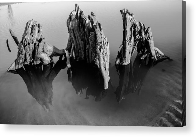 Driftwood Acrylic Print featuring the photograph Three Kings by Zachary Bale