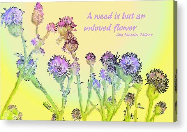 Flower Acrylic Print featuring the photograph An Unloved Flower by Ian MacDonald