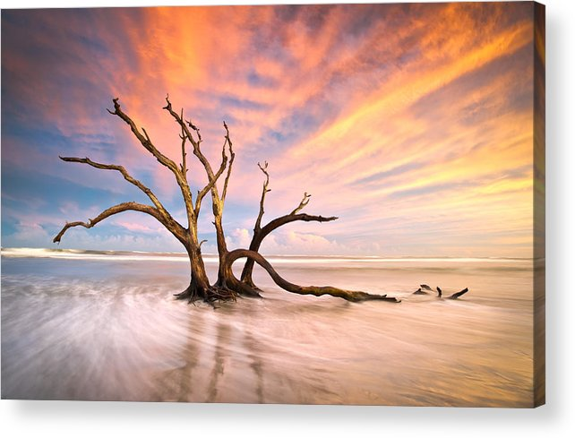 Charleston Acrylic Print featuring the photograph Charleston Sc Sunset Folly Beach Trees - The Calm by Dave Allen
