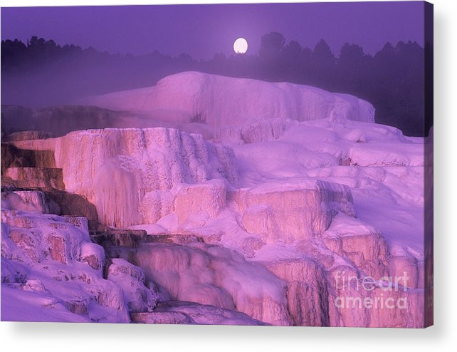 North America Acrylic Print featuring the photograph Full Moon Sets Over Minerva Springs On A Winter Morning Yellowstone National Park by Dave Welling