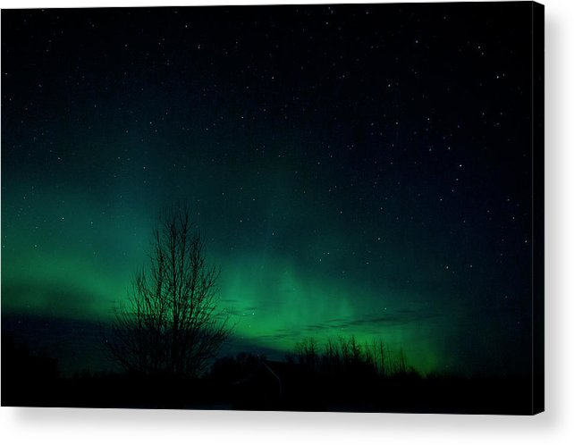 Aurora Borealis Acrylic Print featuring the photograph Like Firefly's In The Sky by Marie Fierek