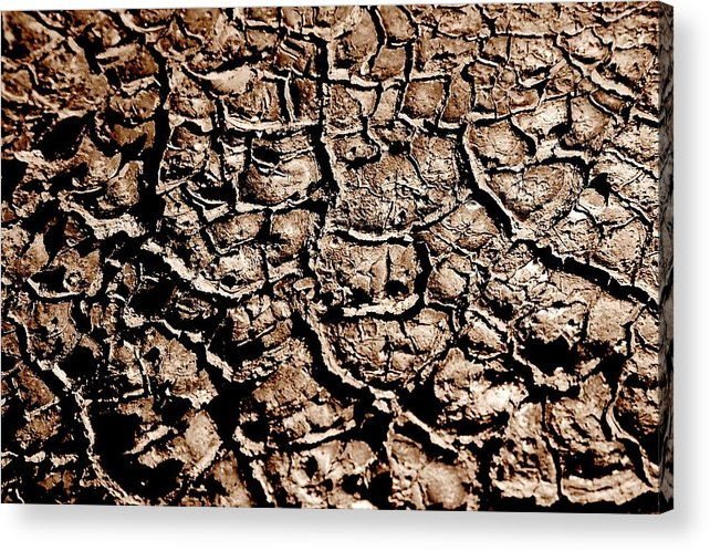 Landscape Acrylic Print featuring the photograph Cracked Earth by Caroline Clark