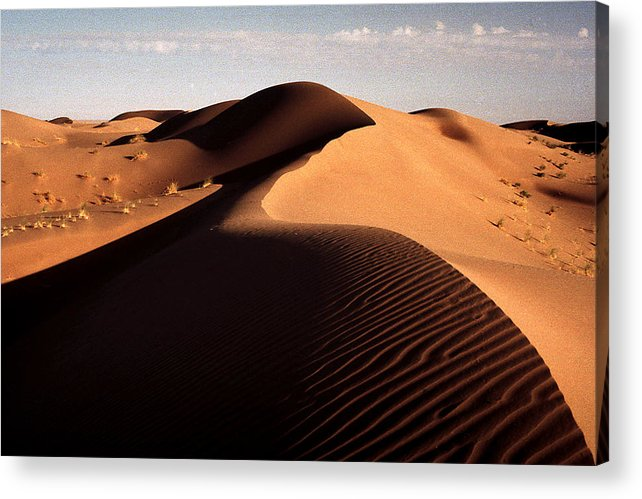 Desert Acrylic Print featuring the photograph Light And Shade by Robert Shahbazi