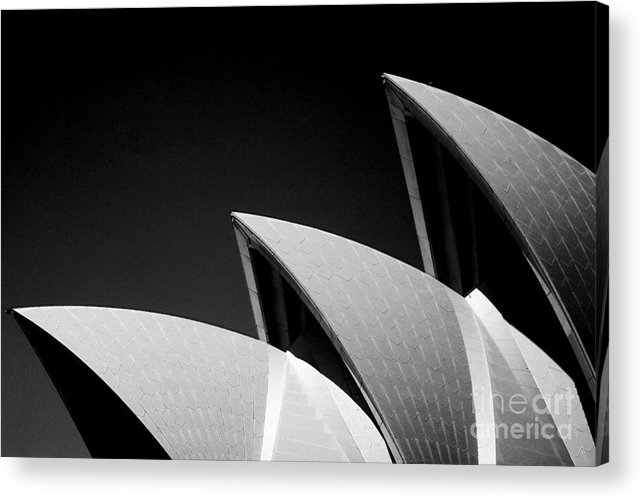 Sydney Opera House Iconic Building Black And White Monochrome Acrylic Print featuring the photograph Sydney Opera House by Sheila Smart Fine Art Photography